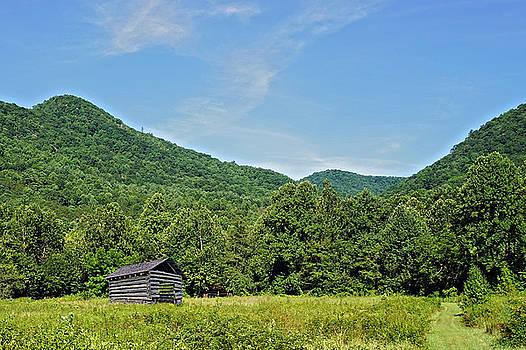 Summer Barn by Susan Leggett