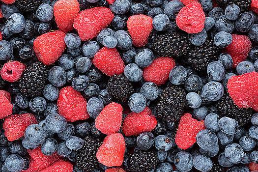 Summer Berries by Steve Gadomski