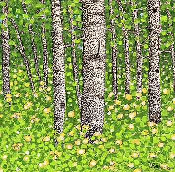 Summer Birch 2 by Valerie Romano
