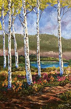 Summer Birch Trees by Cassandra Gallant