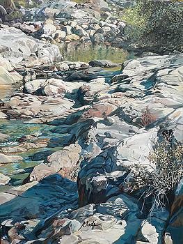 Summer creek by Nadi Spencer