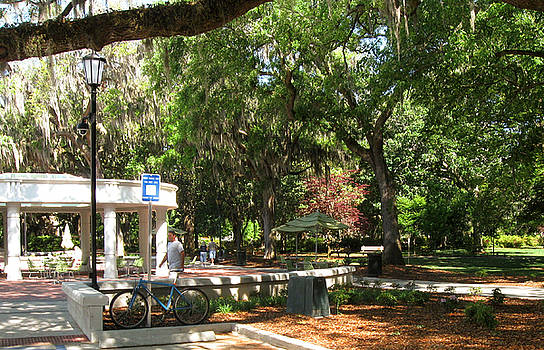 Summer Day in Forsyth Park by Juliana  Blessington