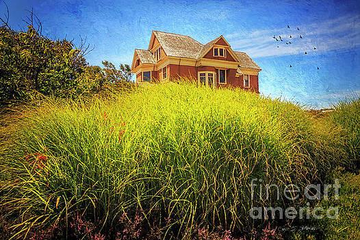 Summer Day in Fort Bragg by Craig J Satterlee