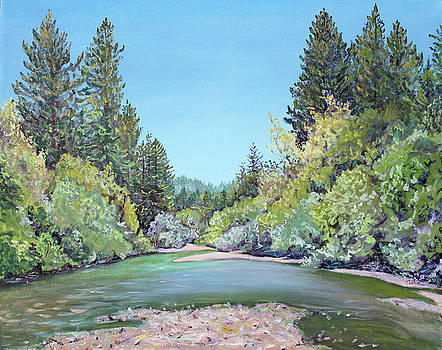 Summer Day on the Gualala River by Asha Carolyn Young