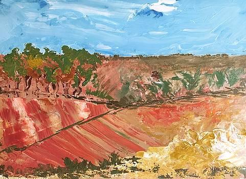 Summer Fields by Norma Duch