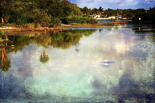 Summer fishing  by Eagle Finegan