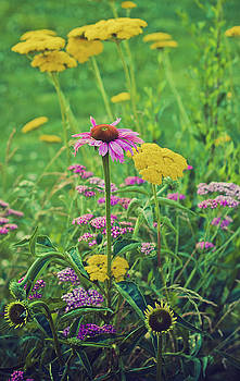 Summer Flowers by Virginia Folkman