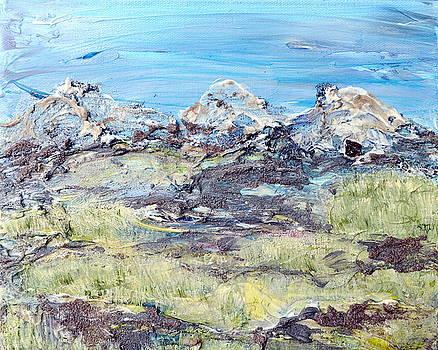 Regina Valluzzi - Summer Foothills