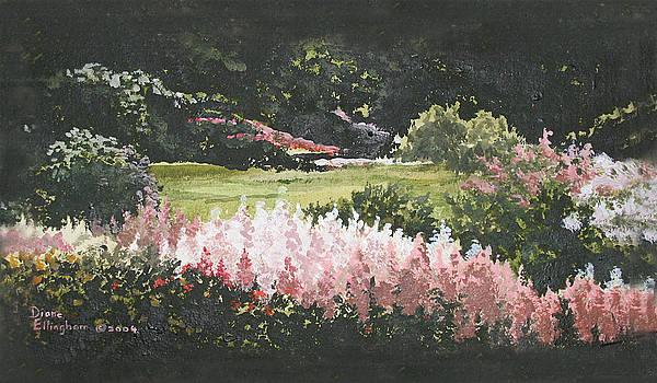 Summer Garden by Diane Ellingham