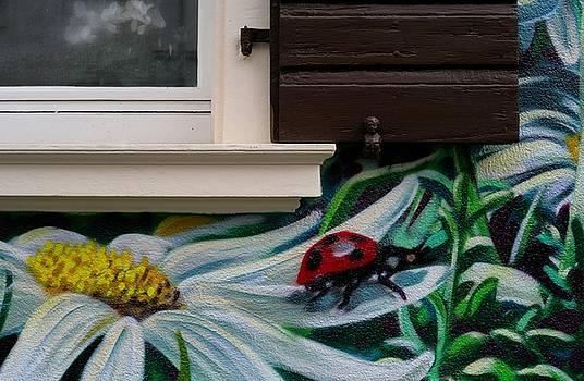 Summer House by Lens Artist