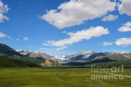 Summer in Alaska by Kiana Carr