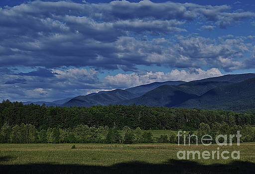 Summer in Cades Cove by Douglas Stucky