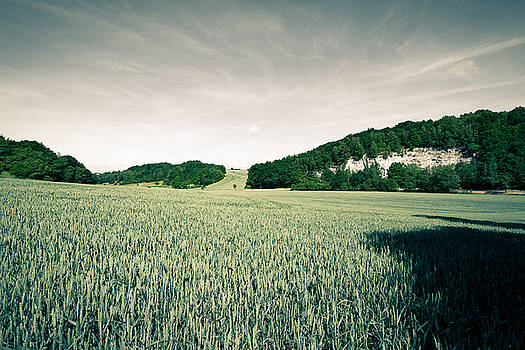 summer in Ruedigsdorf by Andreas Levi
