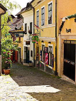 Summer in Szentendre by Rae Tucker