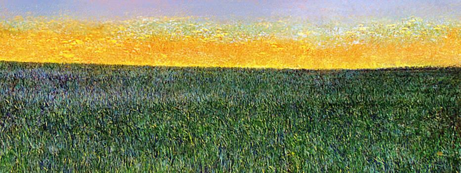 Summer is Coming Abstract by Menega Sabidussi