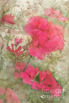 Summer Joy by Betty LaRue