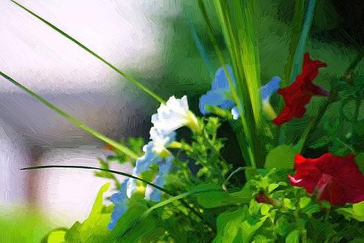 Summer Morning by John Ellis