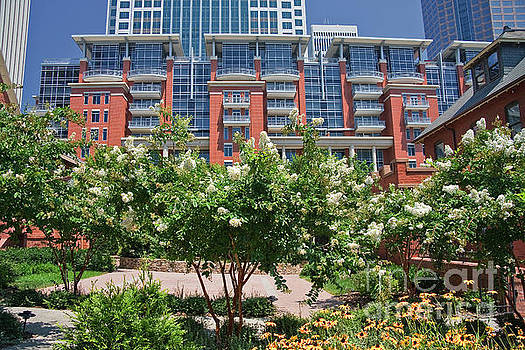 Summer on The Green in Charlotte by Jill Lang