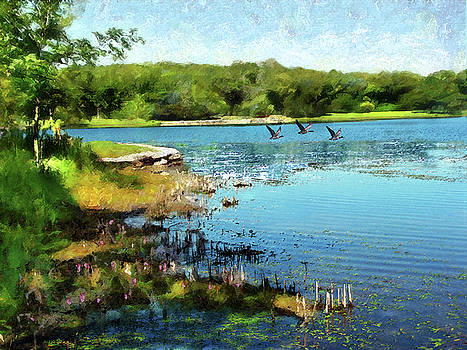 Summer On The Lake by Cedric Hampton