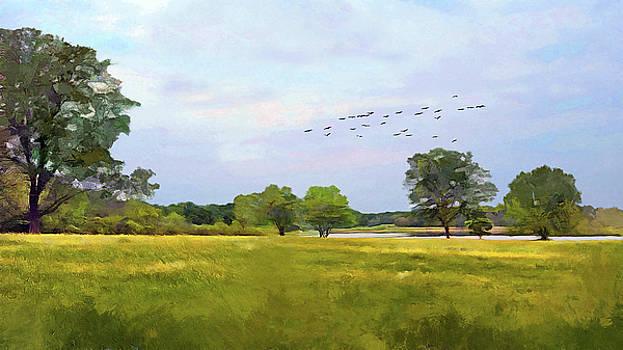Summer Pastoral by Cedric Hampton