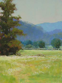 Summer Pasture by Marsha Savage