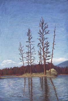 Summer Pines on Echo Lake by Teresa Kelly-Tagas