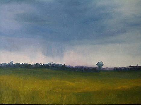 Summer Rain by Margaret Farrar