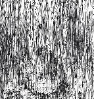Summer Rain by Rachel Christine Nowicki