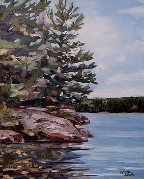 Summer Reflections by Monica Ironside