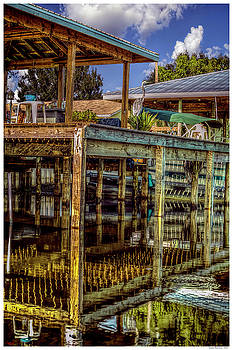 Summer Reflections by Rogermike Wilson