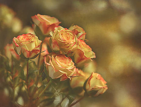 Summer Roses #2 by Pat Abbott