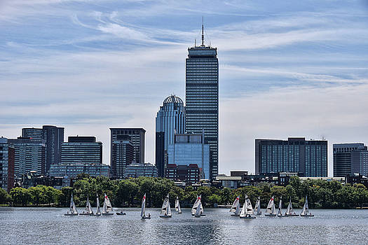 Summer Sailing On The Charles by Tricia Marchlik