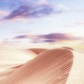 Summer Sands by Phil Perkins