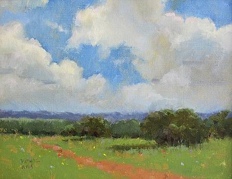 Summer Sky  by Judy Crowe