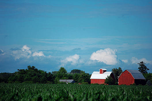 Summer Sky Summer Farm by Jame Hayes