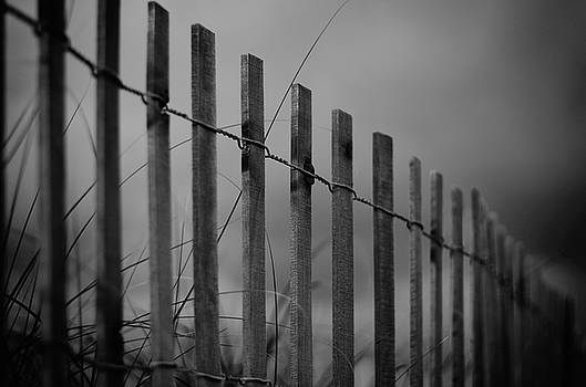 Summer Storm Beach Fence Mono by Laura Fasulo