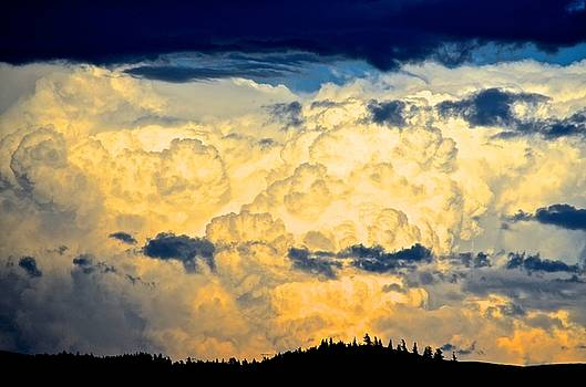 Summer Storm by Gregory Merlin Brown