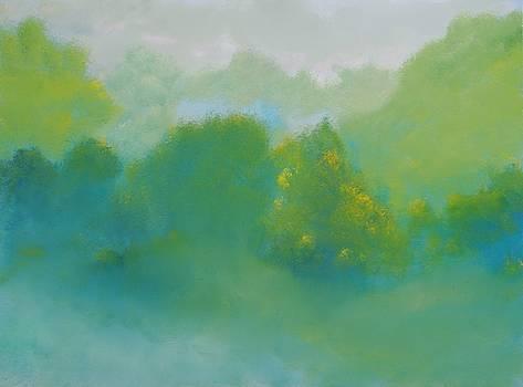 Summer Sunday by David Snider
