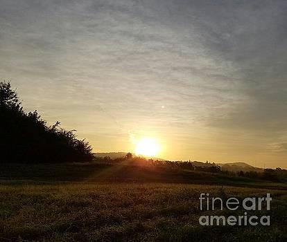 Maria Urso - Summer Sunrise 1a