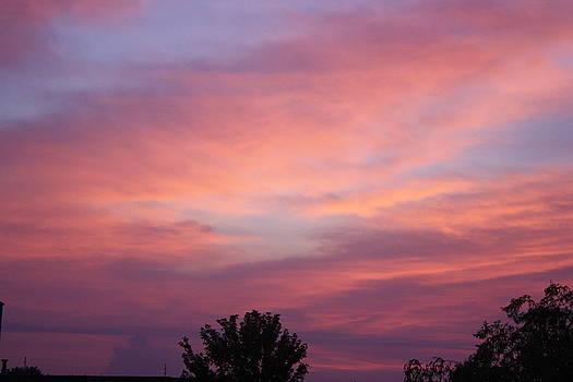 Summer Sunrise by Alexandria Williamson