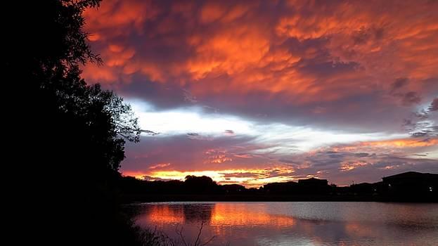 Summer Sunset 01 by Jonathan Sabin