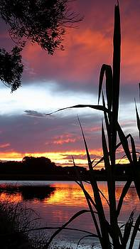 Summer Sunset 02 by Jonathan Sabin