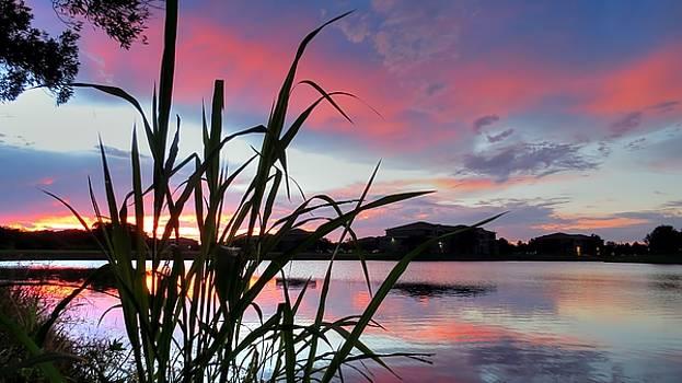 Summer Sunset 03 by Jonathan Sabin