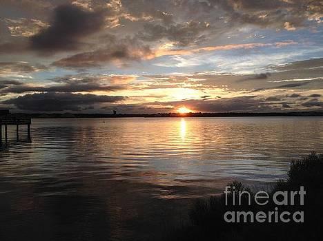 Summer sunset over St Johns River by Mitzisan Art LLC