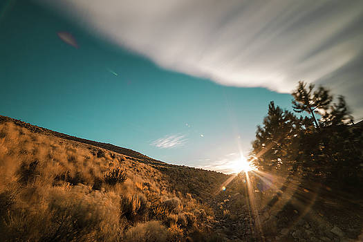Summer Sunset with Blue Sky, Cloud Movement, Trees and Sunburst in Northwest Reno, Nevada by Brian Ball