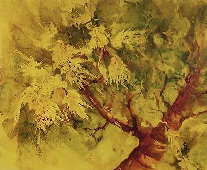Summer Tree by Judy Osiowy