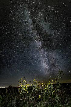 Summer Under the Stars by Scott Bean