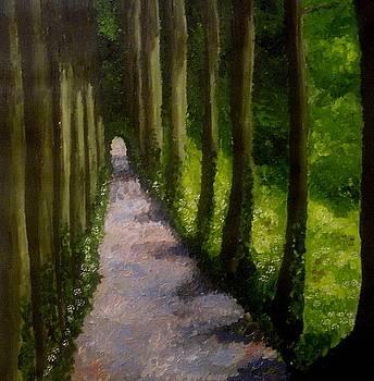 Summer Walk by Mats Eriksson