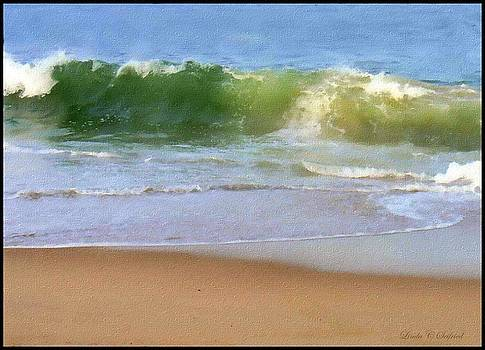 Summer Wave by Linda Seifried