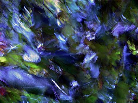 Summer Wind by Eugene Forte